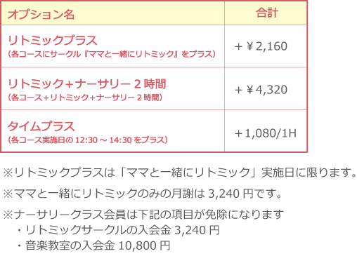 鎌倉アミ幼児教室の追加オプション費用